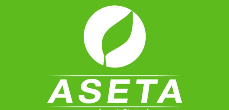 Logotipo - Aseta