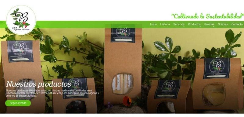 Sitio Web - Brotes Nativos