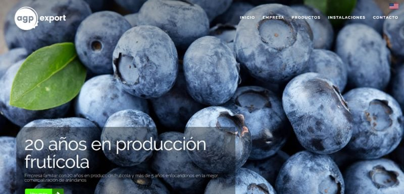 Sitio Web - AGP Export